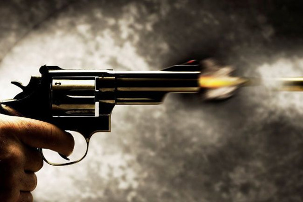 सिपाही की बर्थडे पार्टी में चली गोली, दारोगा घायल