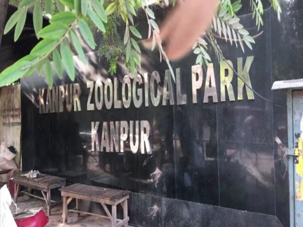 कानपुर जू के सभी पक्षियों को मारने के आदेश, 10 किमी दायरे में मांस बिक्री पर रोक