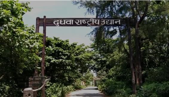 खीरी में बाघ की हाय-बाय किये जाने का वीडियो वायरल, सलमान खान की फ़िल्म की तर्ज पर युवक बोला